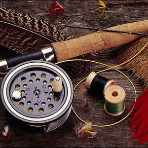Охотничьи и рыболовные магазины Досчатого